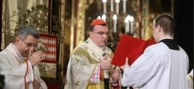 kardinal božić