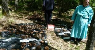 ekshumacija-srb1